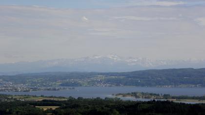 Blick von der Homburg über den Untersee auf den Alpstein