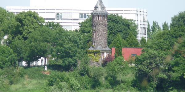 Hitdorf