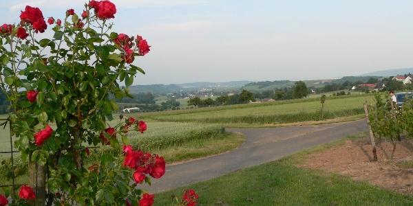 Blick vom Wanderweg auf die Ortsgemeinde