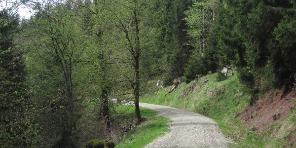 Wanderweg im Kunzental