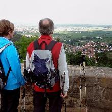 Blick vom Hambacher Schloss auf die Ortschaften von Neustadt