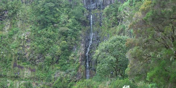 Der Risco Wasserfall
