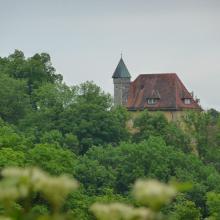 Blick zum Schloss Burleswangen