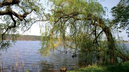 Blick auf den Teupnitzer See.