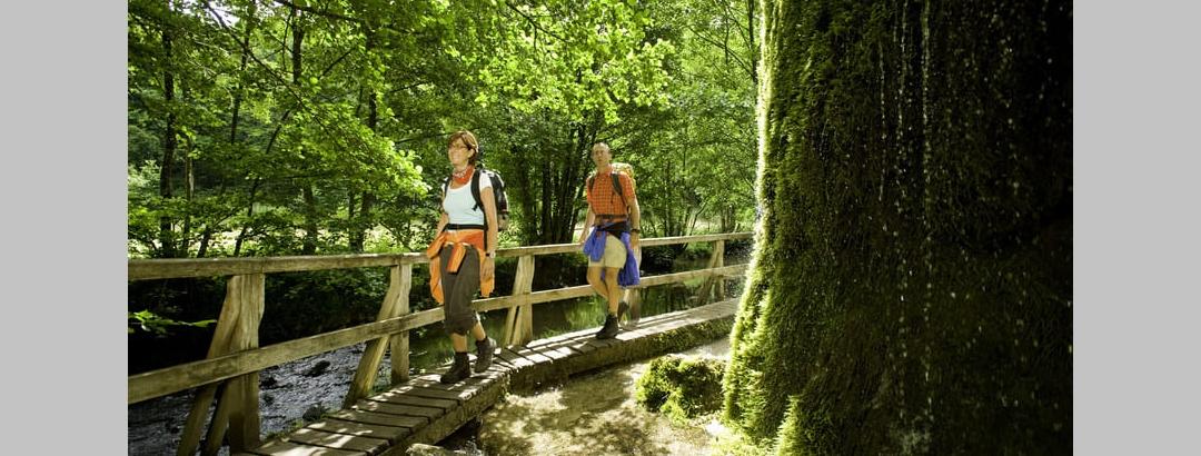 Wandern In Der Eifel Die Schonsten Touren Der Region