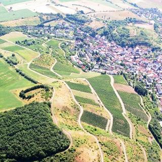 Blick auf die Gemeinde Bockenau
