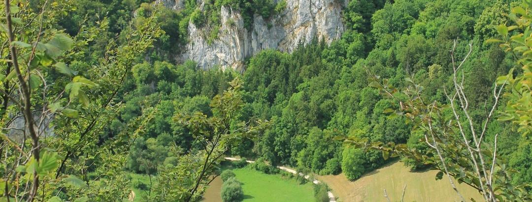 DonauWelle Donaufelsen-Tour