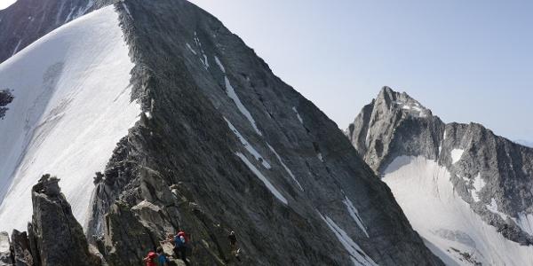 Vom Grauen Nöckl sieht man direkt auf den Normalweg auf den Hochgall über den felsigen Nordgrat.