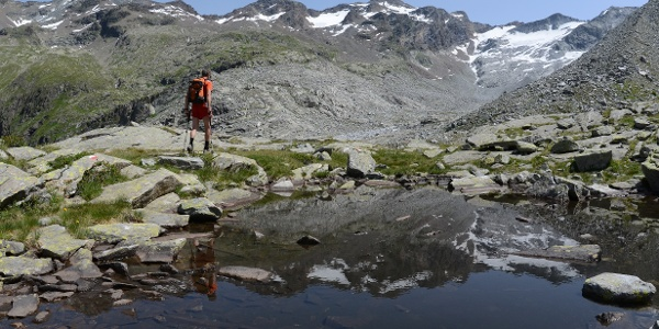 Kleine Tümpel säumen den Weg zum Lenkstein, der später links oberhalb der Moränenhänge verläuft.