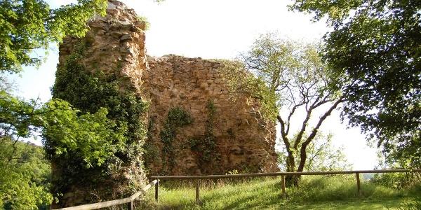 Burg mit Mauerrest