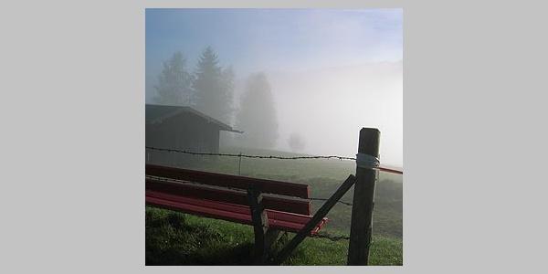Am Morgen kann man hier schon mal in Nebelschwaden eingehüllt werden.