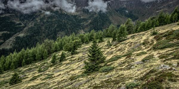 Querung der sanften Südhänge unter Kleinem und Großem Salzkofel auf dem Weg zur Salzkofelhütte.