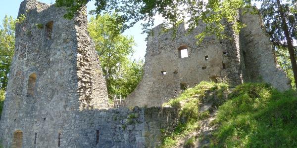 Ruine Alt-Ems