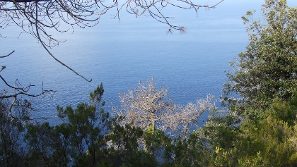 Immer wieder eröffnen sich tolle Ausblicke hinab zum Meer.