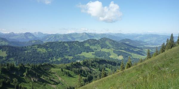 Staufner Haus; Zustieg von der Alpe Scheidwang Aussicht Ri. Süden