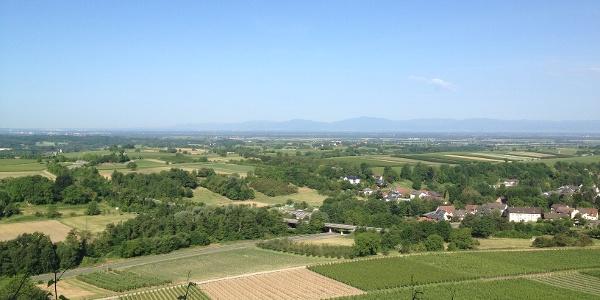 Schöne Panoramablicke auf die Rheinebene bis hin zu den Vogesen
