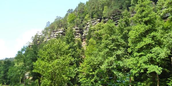 Vom Flößersteig haben wir herrliche Aussichten auf Sandsteinfelsen