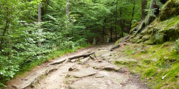 Über Wurzelwege und Steinplatten zum Kuhstall