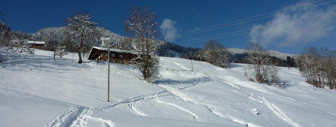 Skitour auf das Rangiswanger Horn bei Sigiswang