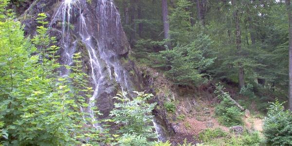 Der Radautal-Wasserfall.