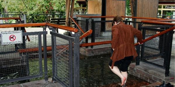 Das Wassertretbecken in Bad Wörishofen.