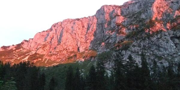 Abendliches Alpenglühen an der Benediktenwand