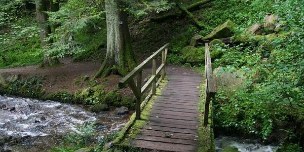 Die Brücke über den Schöpfbach
