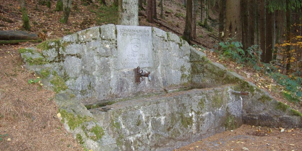 Brunnen am Farrenkopf