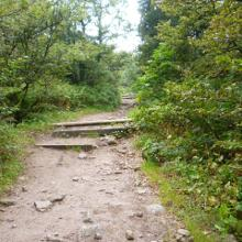 Trail mit Treppen