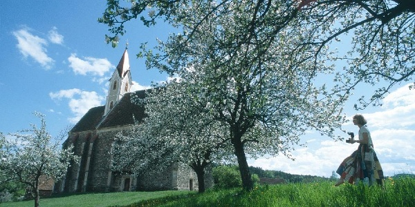Kirche St.Stefan