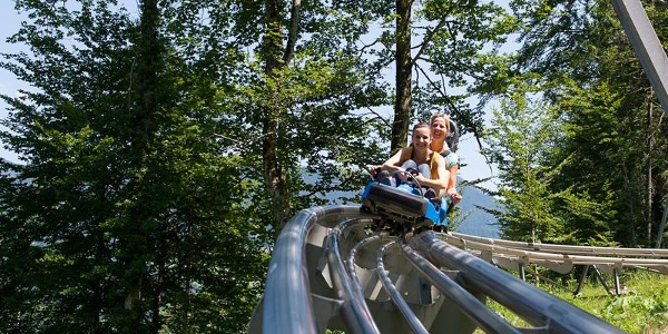 Alpine Coaster - Bild 2