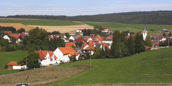 Blick auf Riedöschingen