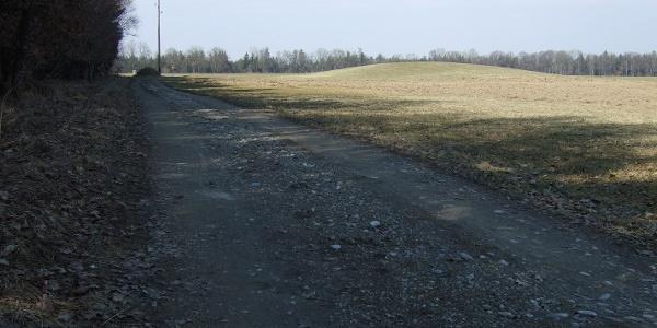 Der Wanderweg führt direkt am Grabhügel vorbei.