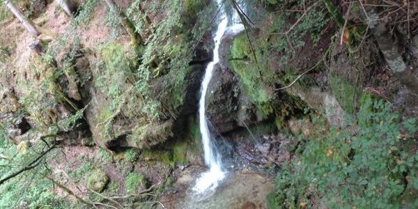 Panoramarunde - Wasserfall