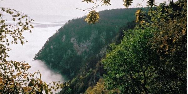 Nebelausblicke Naturpark Hohe Wand
