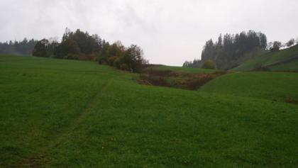 Almwiesen