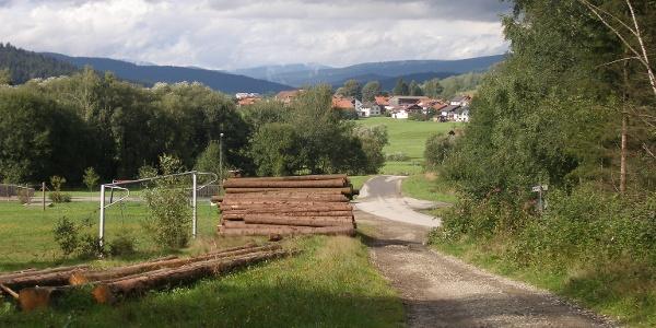 Wenn wir den Wald hinter uns lassen, erreichen wir eine asphaltierte Straße, die uns nach Bärnzell führt.