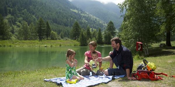 Familial picnic au Schalisee