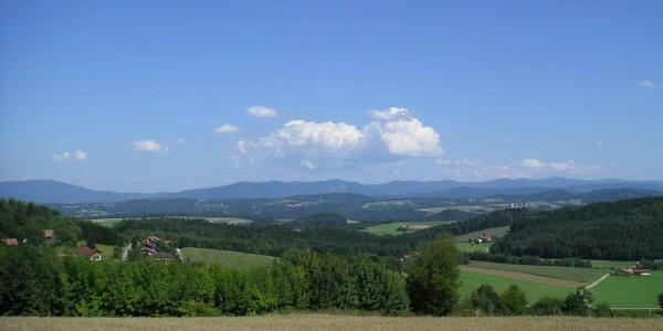 Birnbrunn
