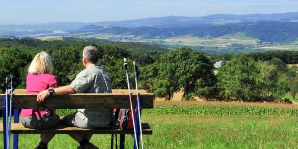 Ausblick vom Halterberg