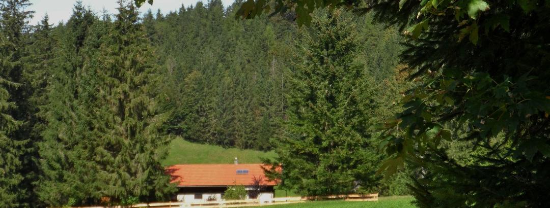 Kräuterwiesen-Alm