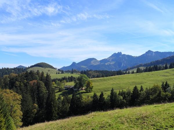 Blick von der Kräuterwiese zur Schmidalm und Kampenwand