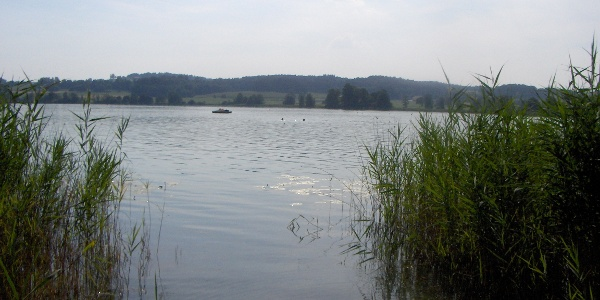 Am Waginger See.