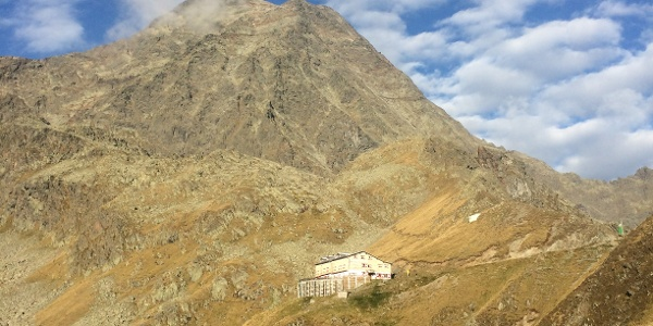 Innsbrucker Hütte mit Habicht