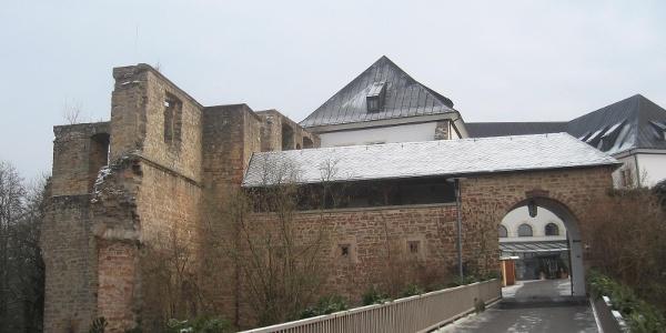 Die Burg Altleiningen liegt auf einem ca. 400 m hohen Berg.