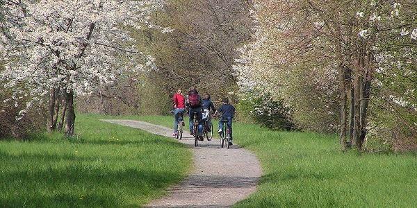 Radfahrer unterwegs in Niedersachsen
