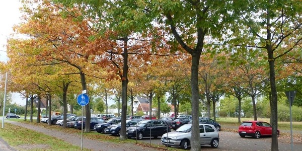 Parkplatz bei Friedhof Auf den Dören