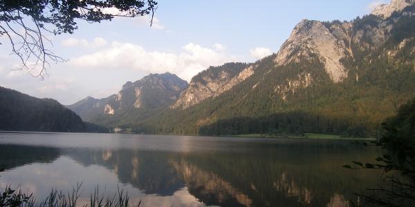Blick von Norden auf den Alpsee.