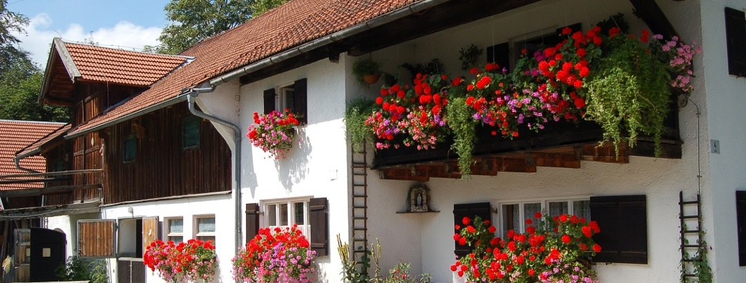 Holiday farm in the Allgäu