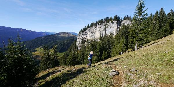 Aufstieg zu Besler und Beslerkopf vor den Felsabbrüchen des Schafkopfes